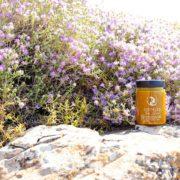 Bee Elixir